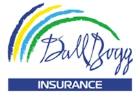 DallBogg Insurance Company Inc