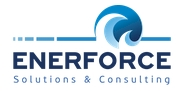 ENERFORCE SOLUTIONS & CONSULTING